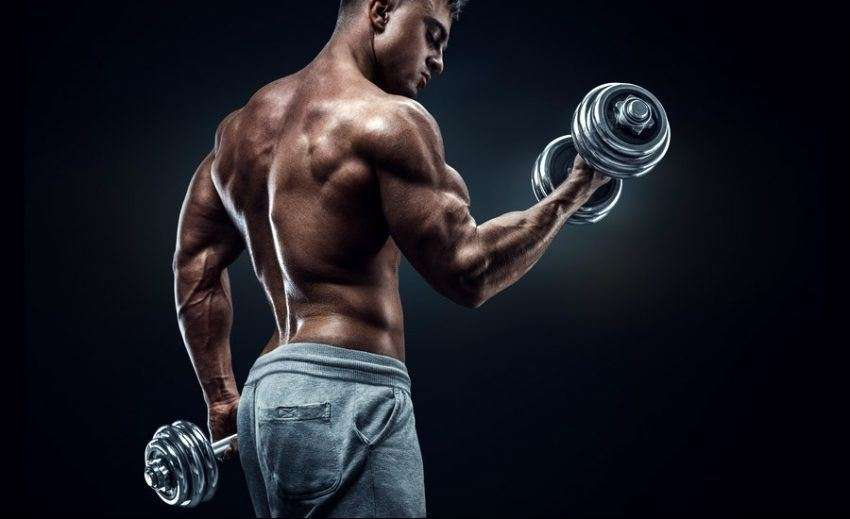 how to build big biceps fast at home